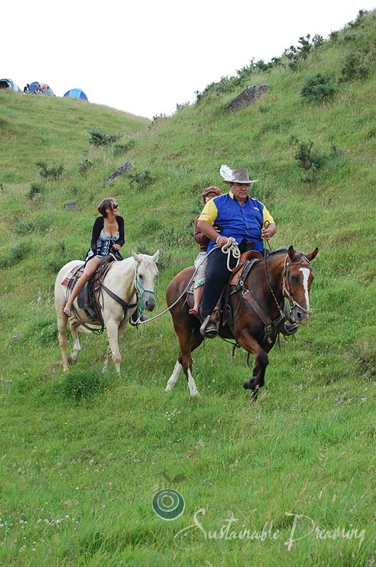 horse riding on side of hill